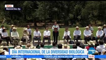Enrique Peña Nieto (EPN), Mineral del Chico, hidalgo, Diversidad Biológica