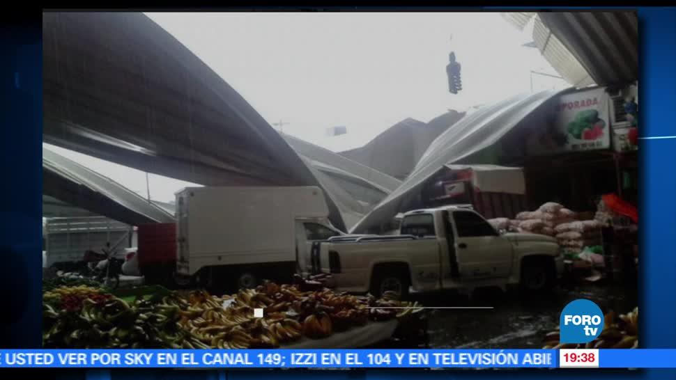 noticias, forotv, Fuertes lluvias, caida de arboles, espectaculares, Oaxaca