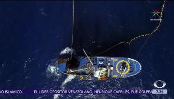 grupo de expertos, prohibición de pesca, Islas Revillagigedo, reserva