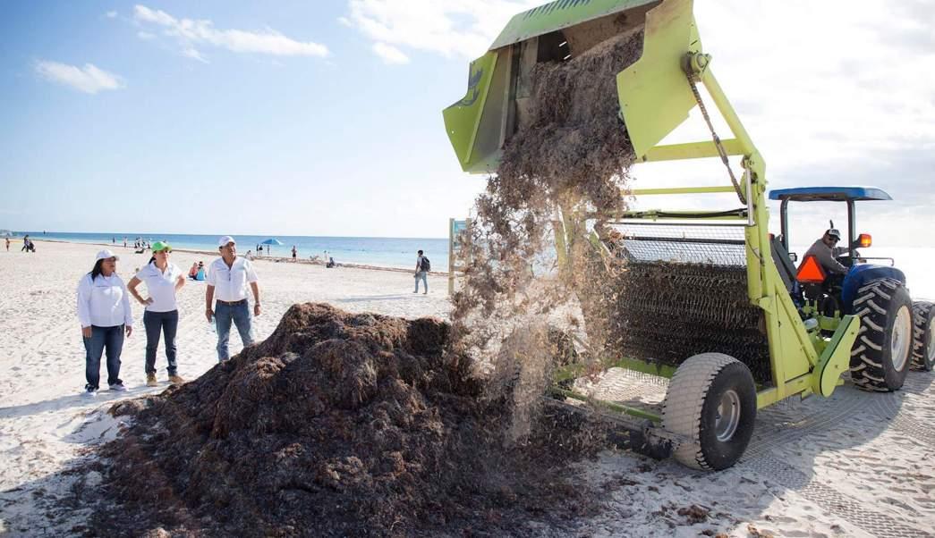 Limpieza por sargazo en playas de Cancún. (Notimex, archivo)