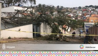 Afectaciones, lluvias, Guerrero, Clima, Afcetaciones por lluvias, fenomenos naturales