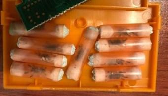 asegura 73 tarántulas en el aeropuerto de guadalajara, jalisco