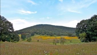 En 2004, el Cerro de los Amoles fue declarado Área Natural Protegida. (Twitter @ieeguanajuato, archivo)