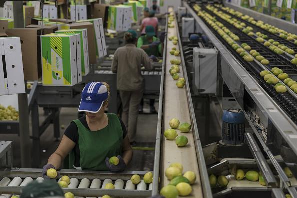 Comercio internacional, Argentina, Estados Unidos, Agricultura, Limones, Exportaciones