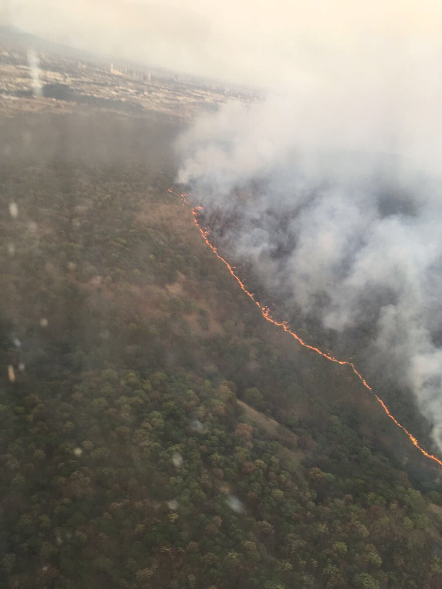 Incendio en Bosque de la Primavera, Jalisco