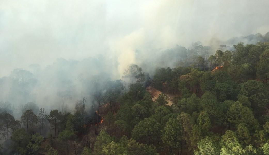 El Edomex es la entidad con más incendios forestales. (Twitter: @CONAFOR)