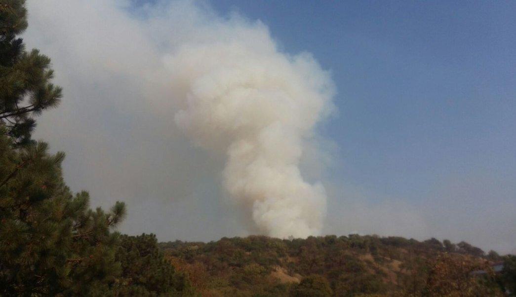 Incendios forestales afectan al estado de Jalisco