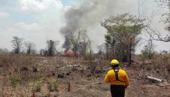 Incendio forestal en Hopelchén, Campeche. (Twitter @CONAFOR, archivo