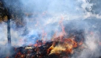 Se prevé que la temporada de incendios concluirá el 31 de mayo. (Twitter @SEGOB_mx, archivo)