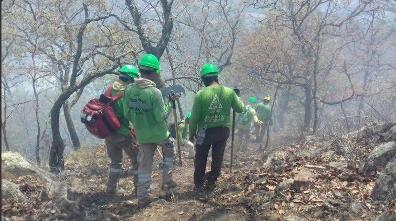 Combate de incendios forestales en Chiapas. (Twitter @pcivilchiapas)