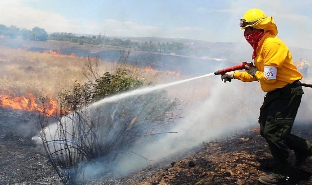 Zacatecas, brigadas rurales, brigadistas, incendios forestales, medio ambiente