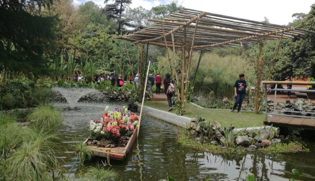 Jardín botánico, Chapultepec, festival de flores y jardines, medio ambiente, ecología, medio ambiente