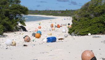 Isla, Henderson, basura, Pacífico, ambiente, plástico,