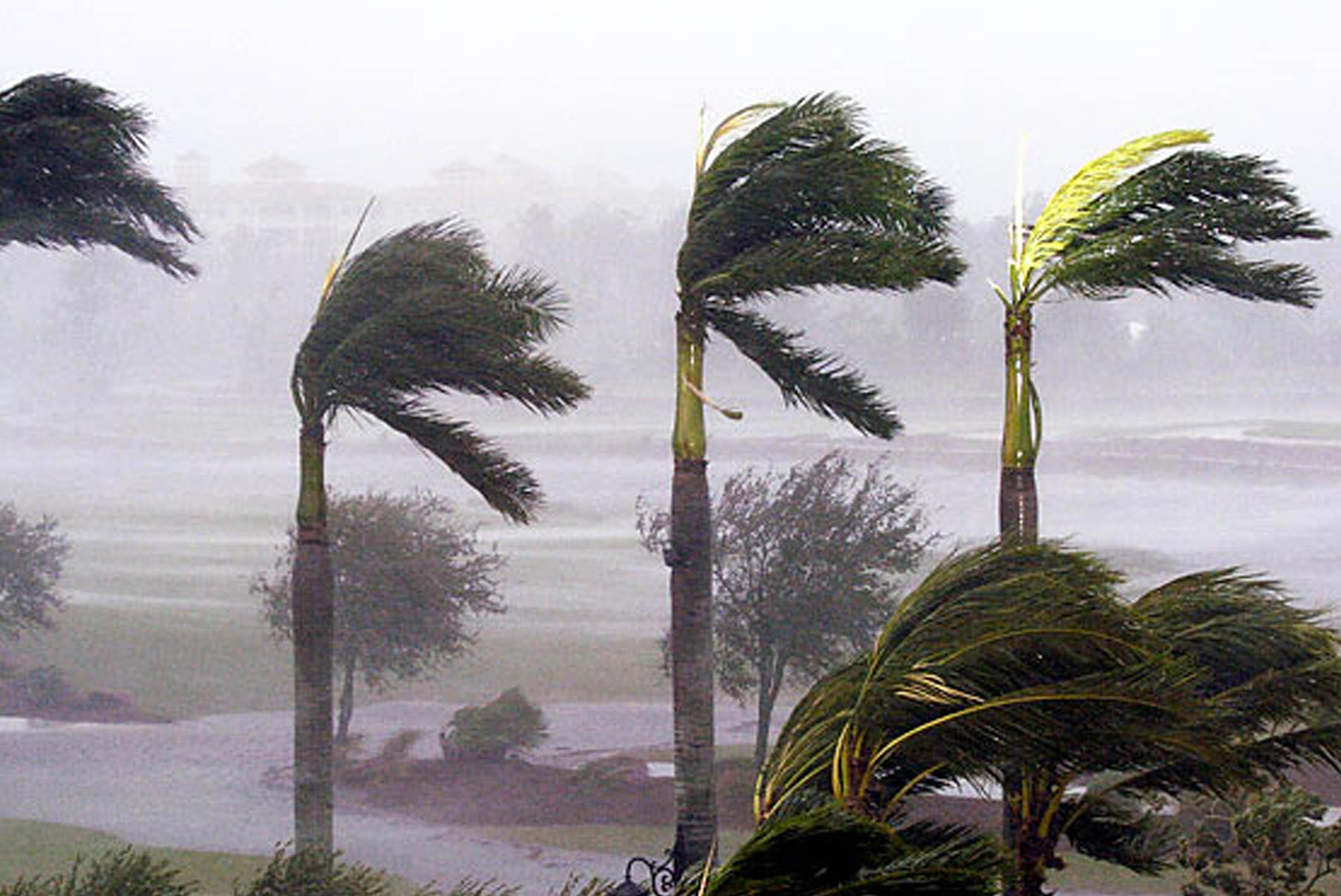 UNAM pronostica ocho huracanes en el Pacífico