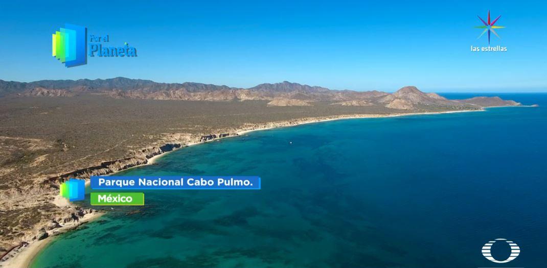 Por el Planeta- Arrecife Guanahacabibes en Cuba