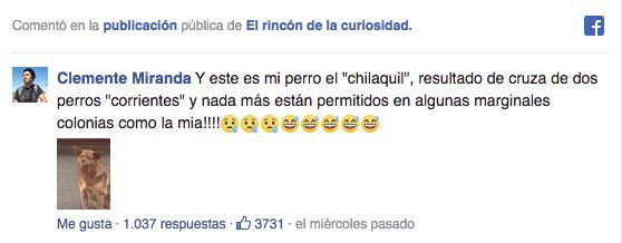 Facebook, chilaquil, perro, meme, famoso