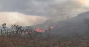 Fuego afecta 67 hectáreas de municipios de Chiapas