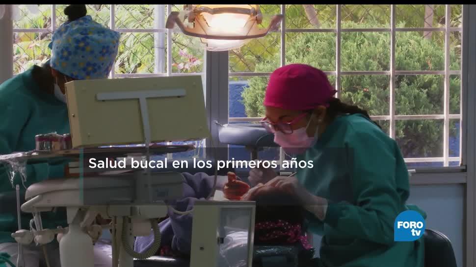 Salud, bucal, primeros años, Especialistas de la UAM