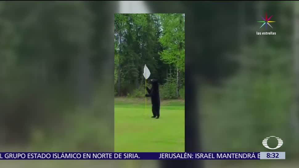 golfista Gary Cox, juega golf, Alaska, nuevos territorios