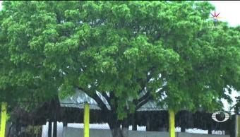 noticias, televisa, daños, Oaxaca, Calvin, lluvias