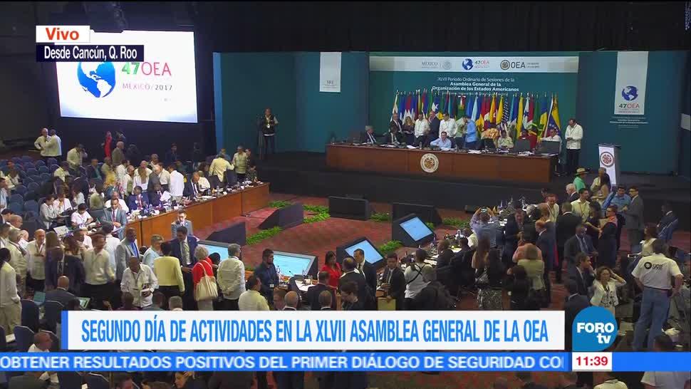 Sesión plenaria, Asamblea General de la OEA, CIDH, Joel Hernández