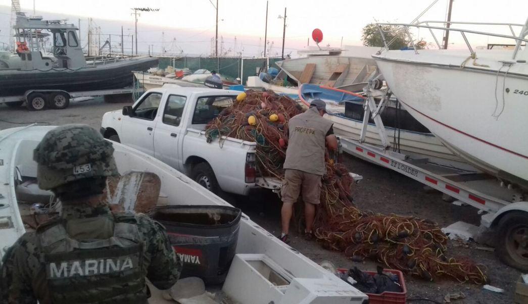 aseguran mallas para atrapar totoabas en baja california