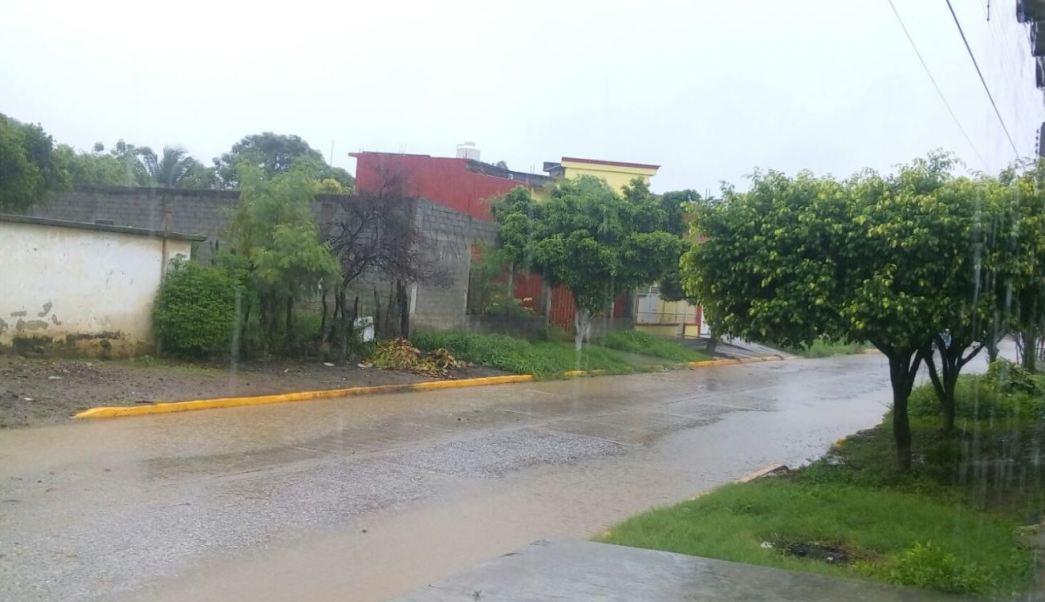 Mantienen suspendidas las clases en regiones de Oaxaca por Calvin