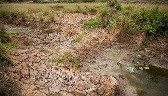 Sequia, vietnam, cambio climático, falta de agua,