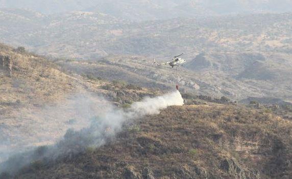 Incendios, Consumen, Bosque, Sonora, Conafor, Hectáreas, Pastizales, Sequía