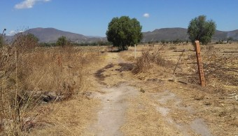 Localizan, Tomas clandestinas, Combustible, Hidalgo, Seguridad