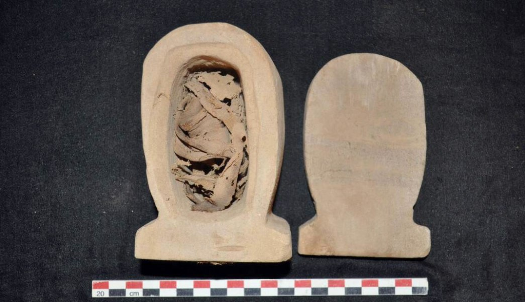 Restos descubiertos de en las tumbas de Asuan
