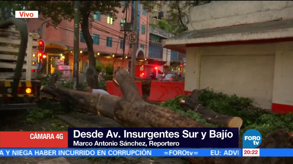 Árbol, cae, sobre, Insurgentes, afectaciones, lluvias