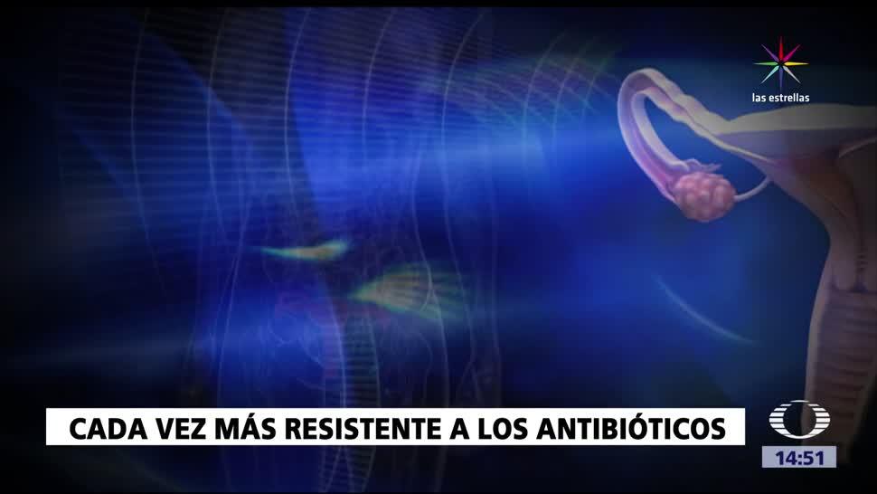 noticias, forotv, Gonorrea, resistente, antibióticos, Organización Mundial de la Salud