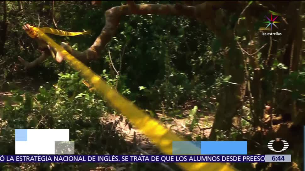 noticias, televisa, Encuentran, cuerpos, 3 edecanes desaparecidas, Veracruz