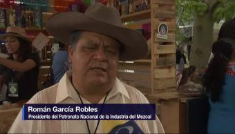 Feria del mezcal, Oaxaca, Guelaguetza, productores mezcaleros