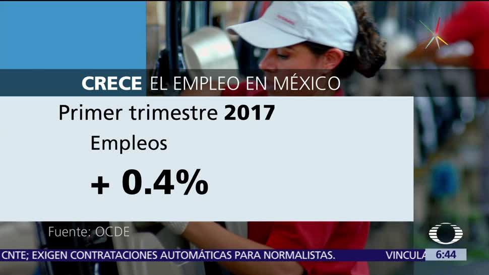 Organización, Cooperación, Desarrollo Económico, empleo en México, trimestre
