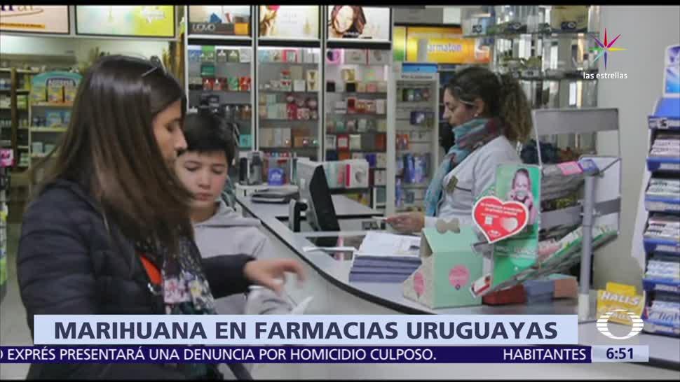 Uruguay, primer país latinoamericano, farmacias venden marihuana, 5 gramos