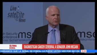 Diagnostican, cáncer, cerebral, senador, republicano, John McCain