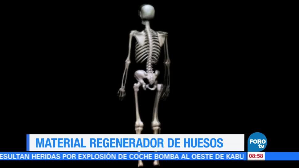 Ximena Cervantes, reportaje, material, regenerar huesos humanos, estudiantes mexicanos