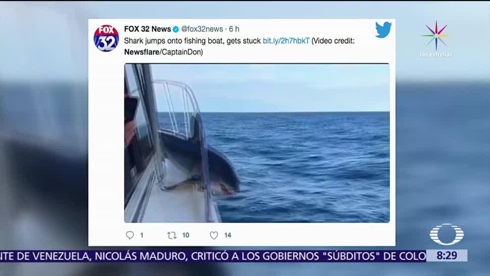 Televisa News Tiburon Atrapado Bordo Barco