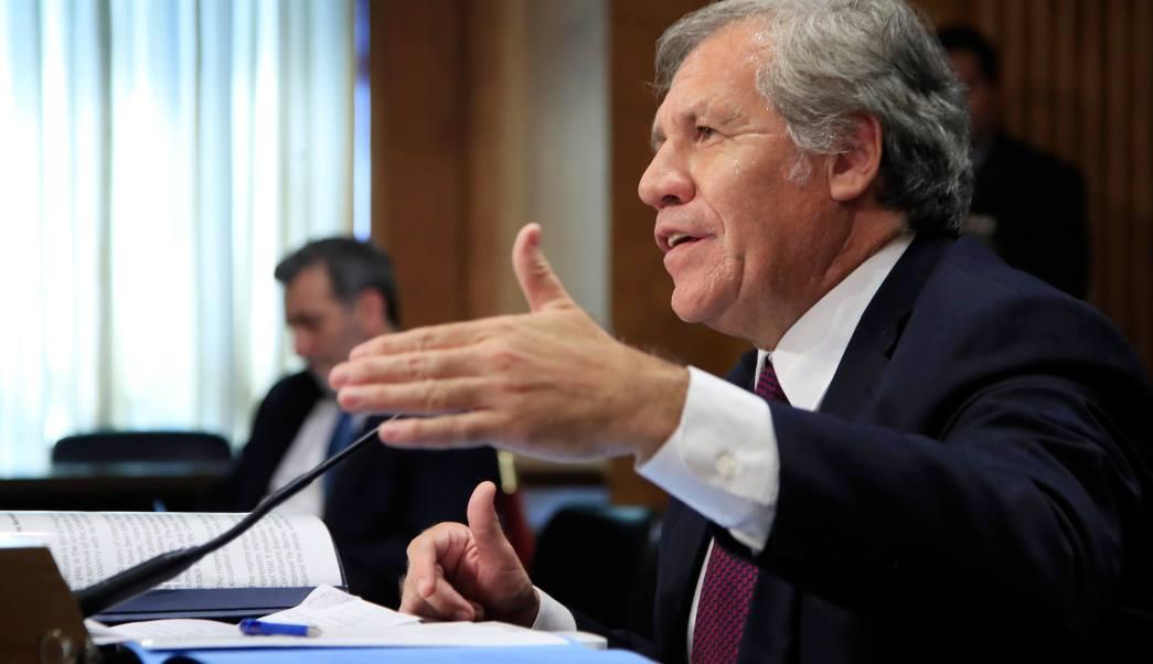 Secretario General de la OEA, Luis Almagro, venezuela, protestas, opositores