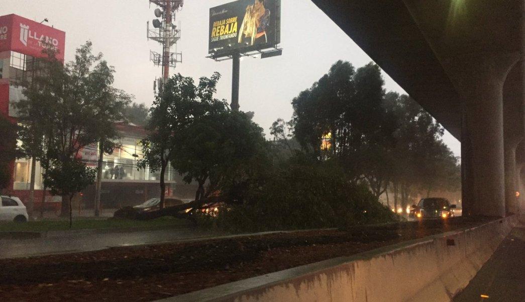 Lluvia derriba árbol carriles Periférico sur