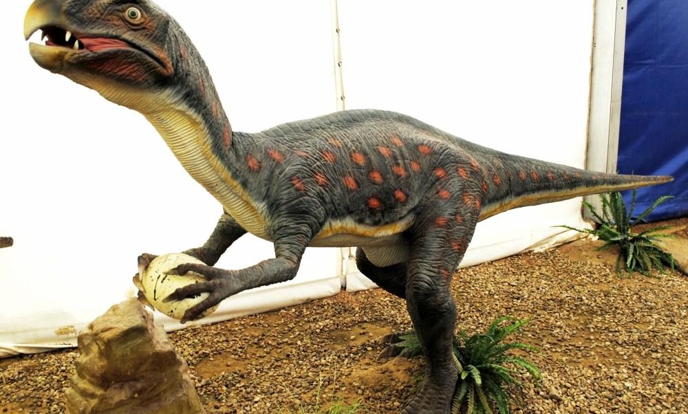 historia natural, dinosaurio, niño, museo, exposición, londres