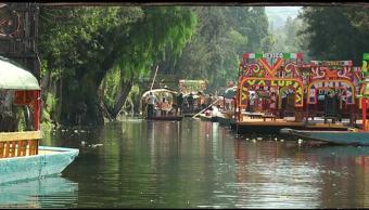 En peligro, extinción, chinampas, Xochimilco, ecología, ciudad de méxico