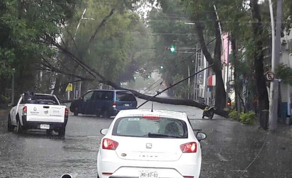 Las lluvias en Guadalajara dejaron daños. (Twitter NTR Guadalajara)