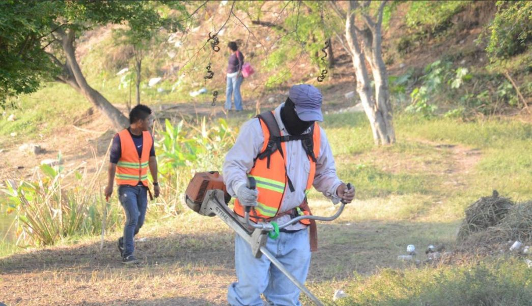personal del ayuntamiento de veracruz limpia las calles