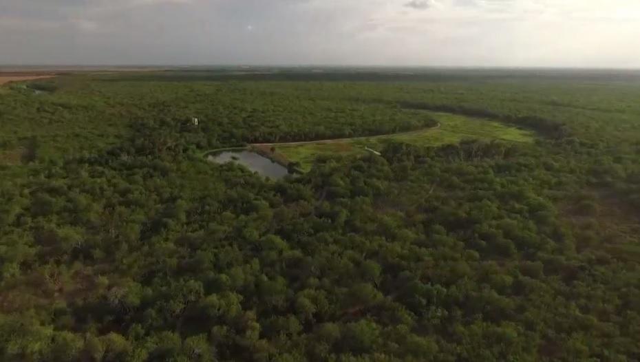 El refugio está ubicado en la frontera entre Texas y México, a unos 10 kilómetros al sureste de McAllen, en el Valle del Río Grande (Foto: wfaa.com)