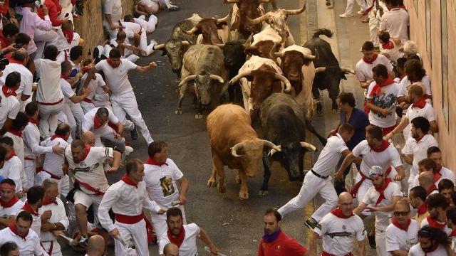 San Fermín, Pamplona, España, pamplonada, Toros, tauromaquia, Cebada Gago