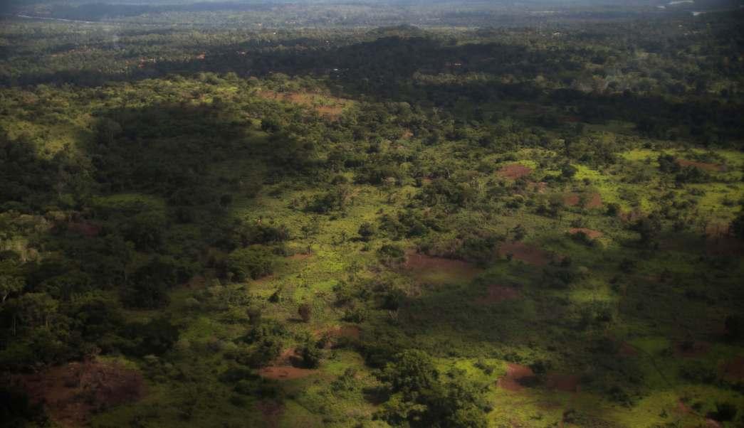 Vista aérea de la selva de la República Centroafricana