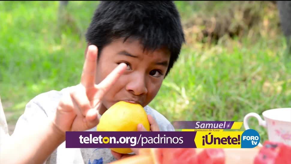 Centros Teletón Atendido Niños